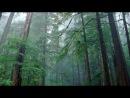 «р» под музыку Sunlounger - Lost (Radio Edit) Лучший транс вокал. Picrolla